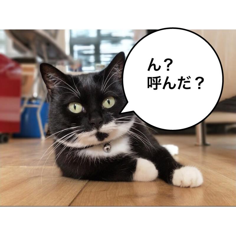 f:id:himawari928:20170910005507j:plain
