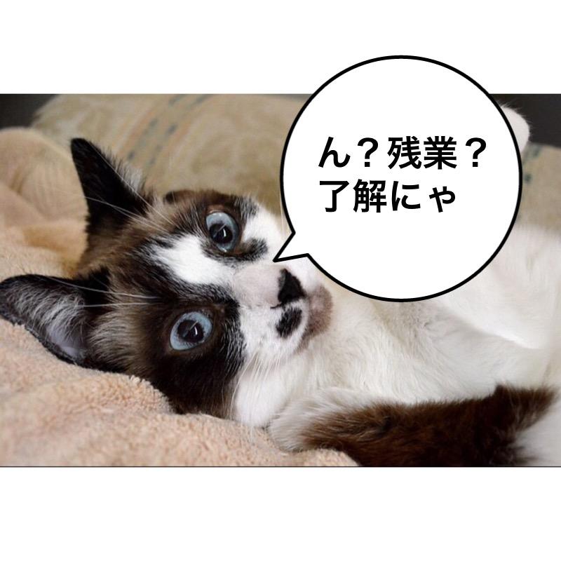 f:id:himawari928:20170910005556j:plain