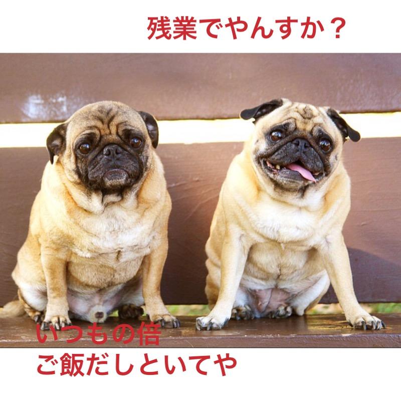 f:id:himawari928:20170910005627j:plain