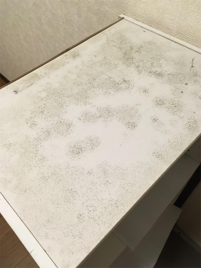 ボックス カビ カラー