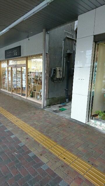 f:id:himawarimamiko:20180617165352j:plain