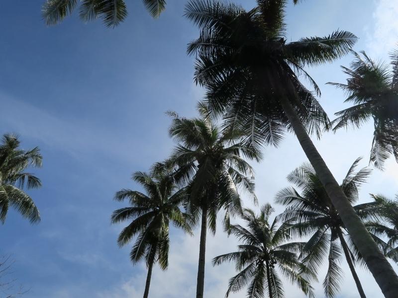 マレーシアの空