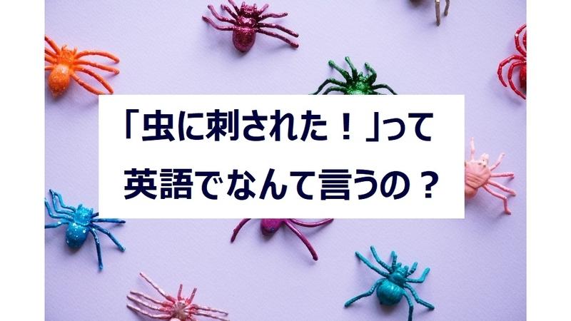 虫に刺された!って英語でなんていうの