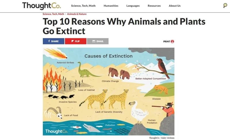 動植物が絶滅する10の理由