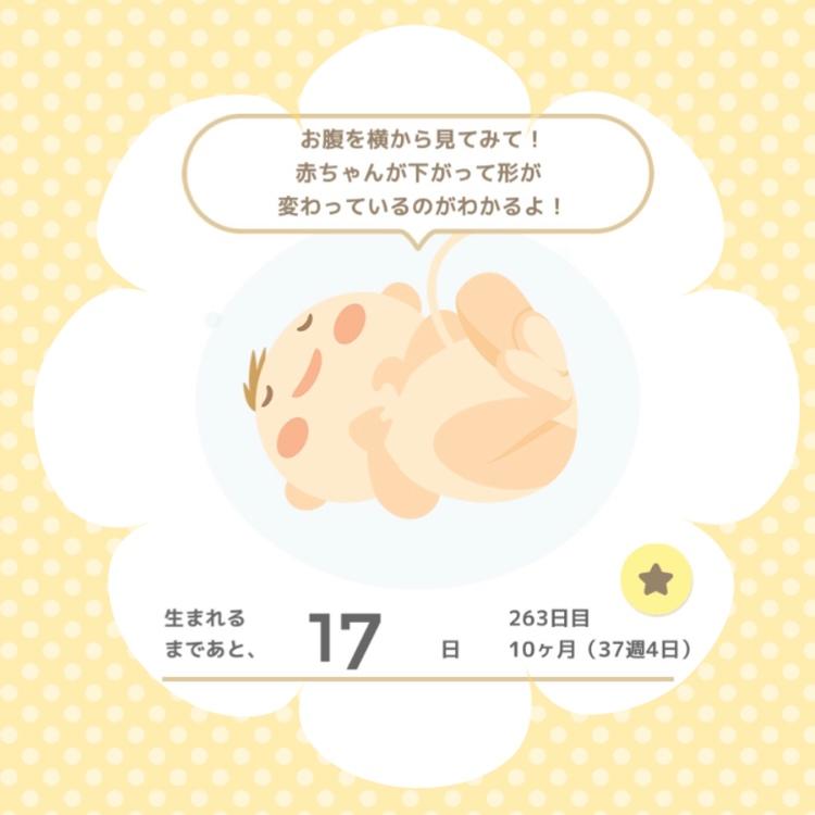 f:id:himechirinoblog:20171010130914j:plain