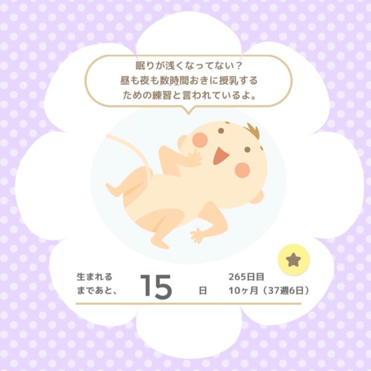 f:id:himechirinoblog:20171012091921j:plain