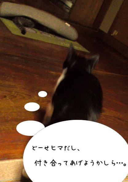 f:id:himejimasakura:20181012211033j:plain