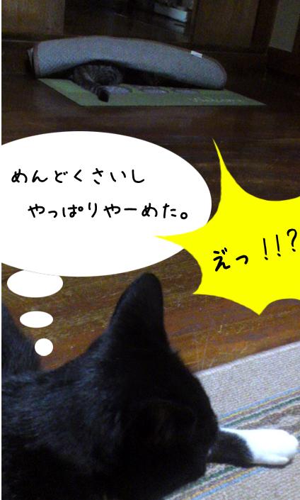 f:id:himejimasakura:20181012211219j:plain