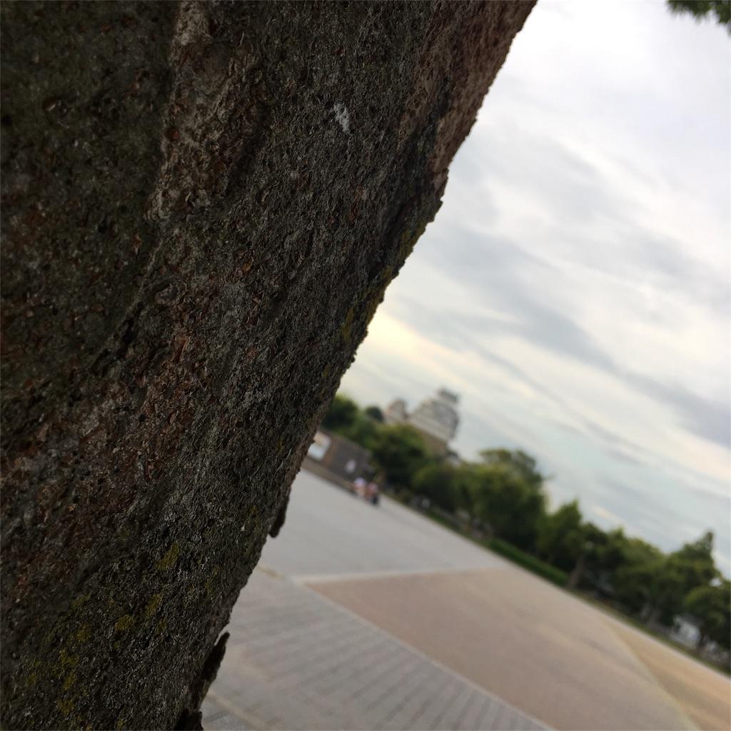 f:id:himejinousagi:20171102001113j:image