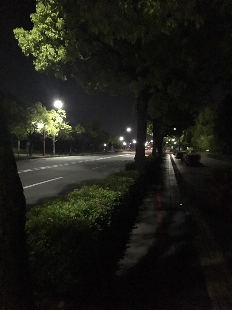 f:id:himejinousagi:20180504224200j:image