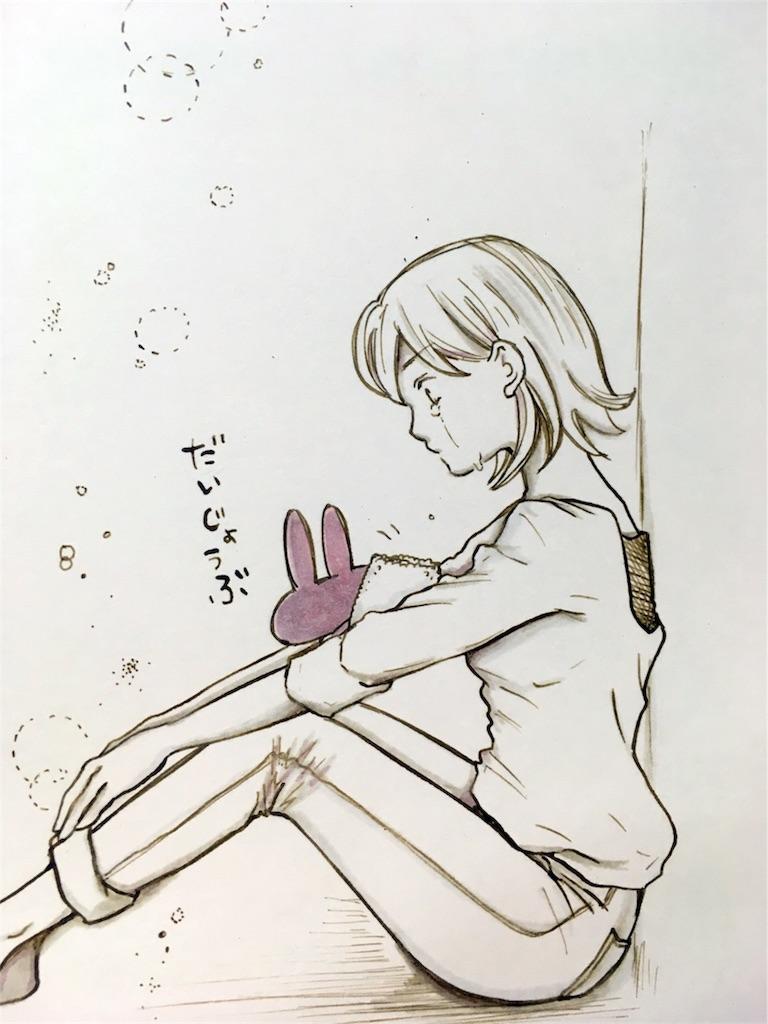 f:id:himejinousagi:20180609201903j:image
