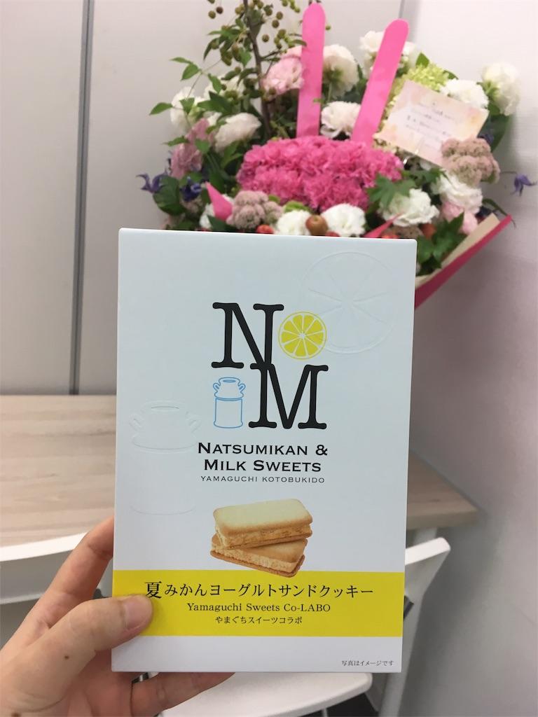 f:id:himejinousagi:20190902153125j:image