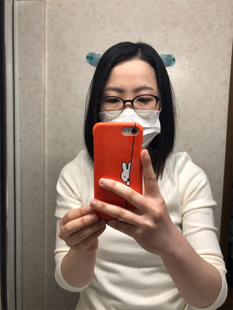 f:id:himejinousagi:20200501160810j:image