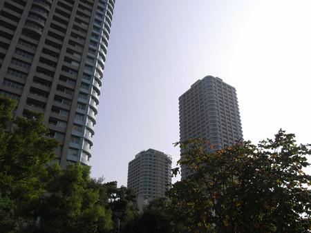 20080802153435