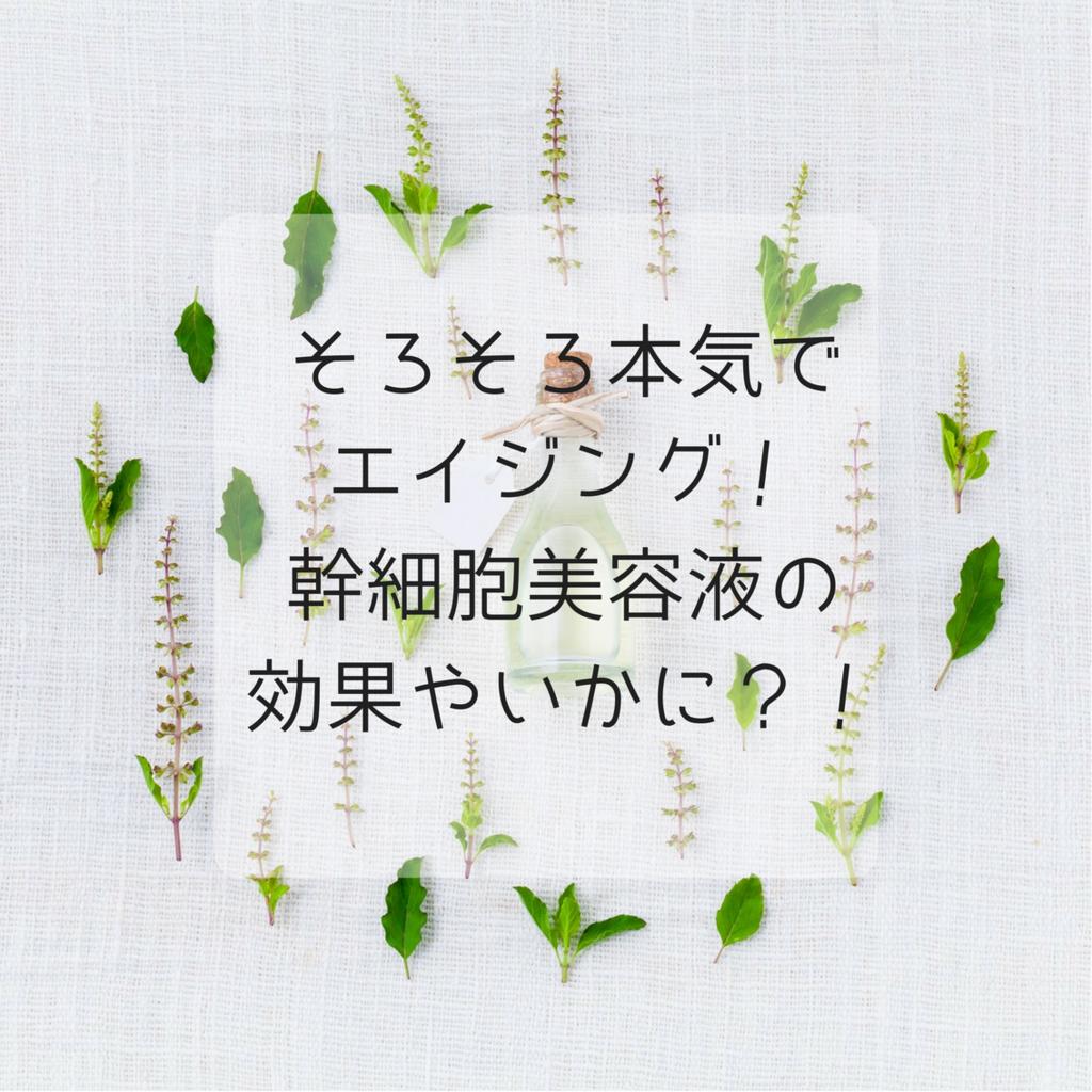 f:id:himiko76:20180114152048p:plain