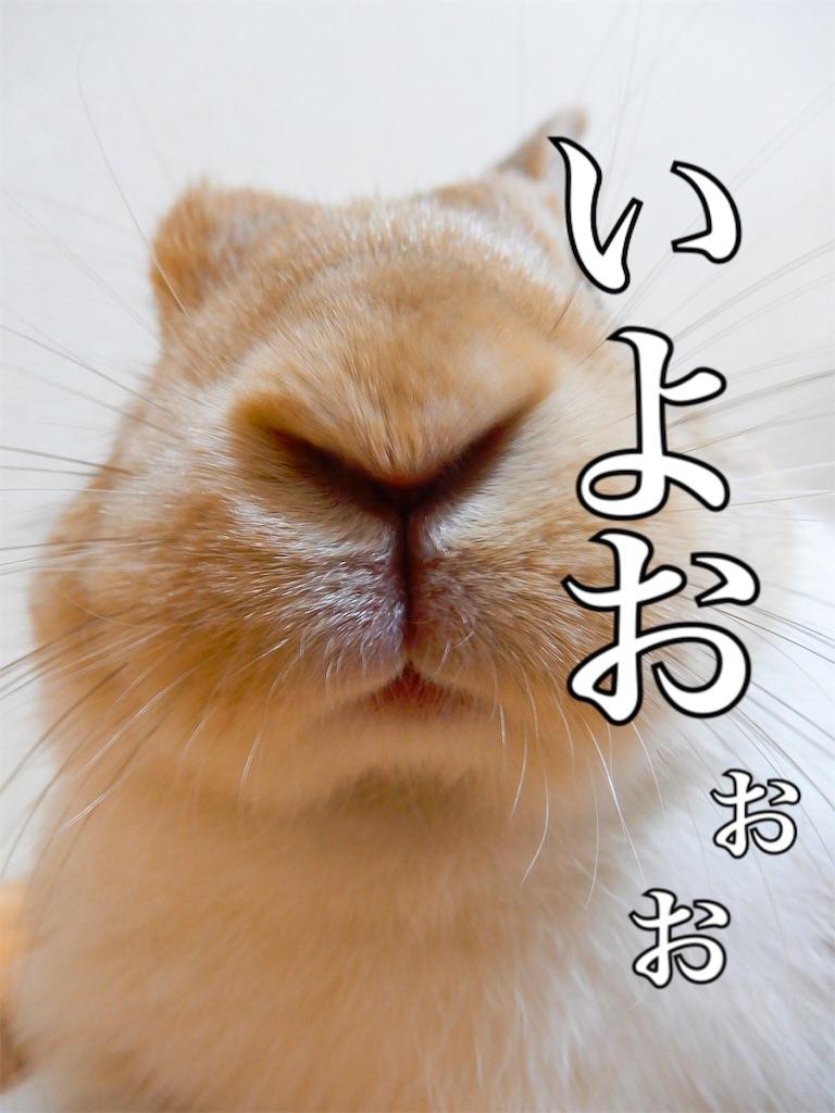 f:id:himitsunohana:20190723122526j:image
