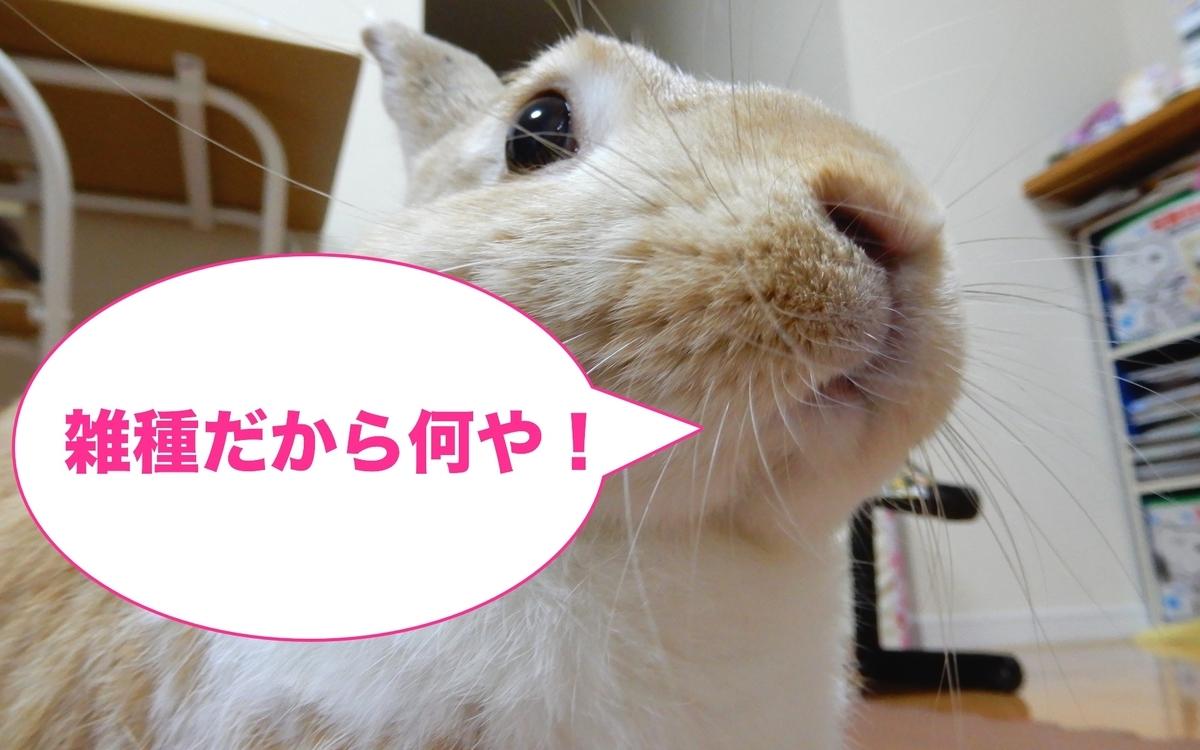 f:id:himitsunohana:20200815112408j:plain