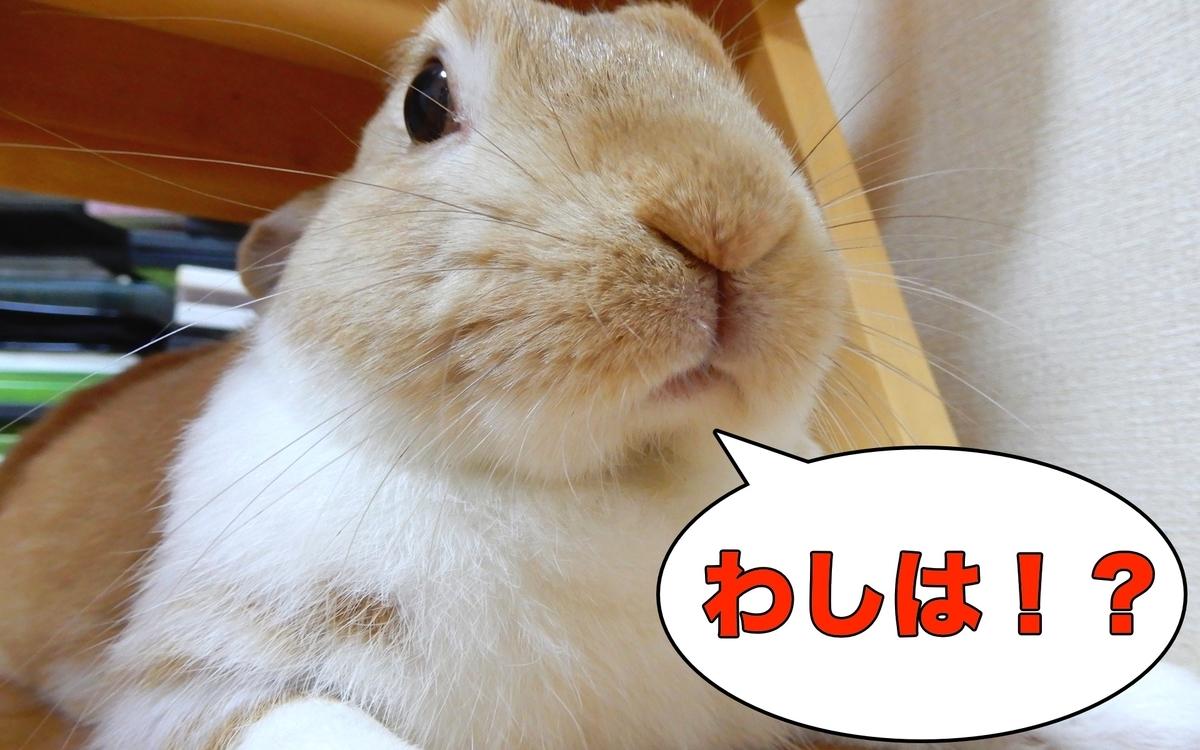 f:id:himitsunohana:20200821192348j:plain