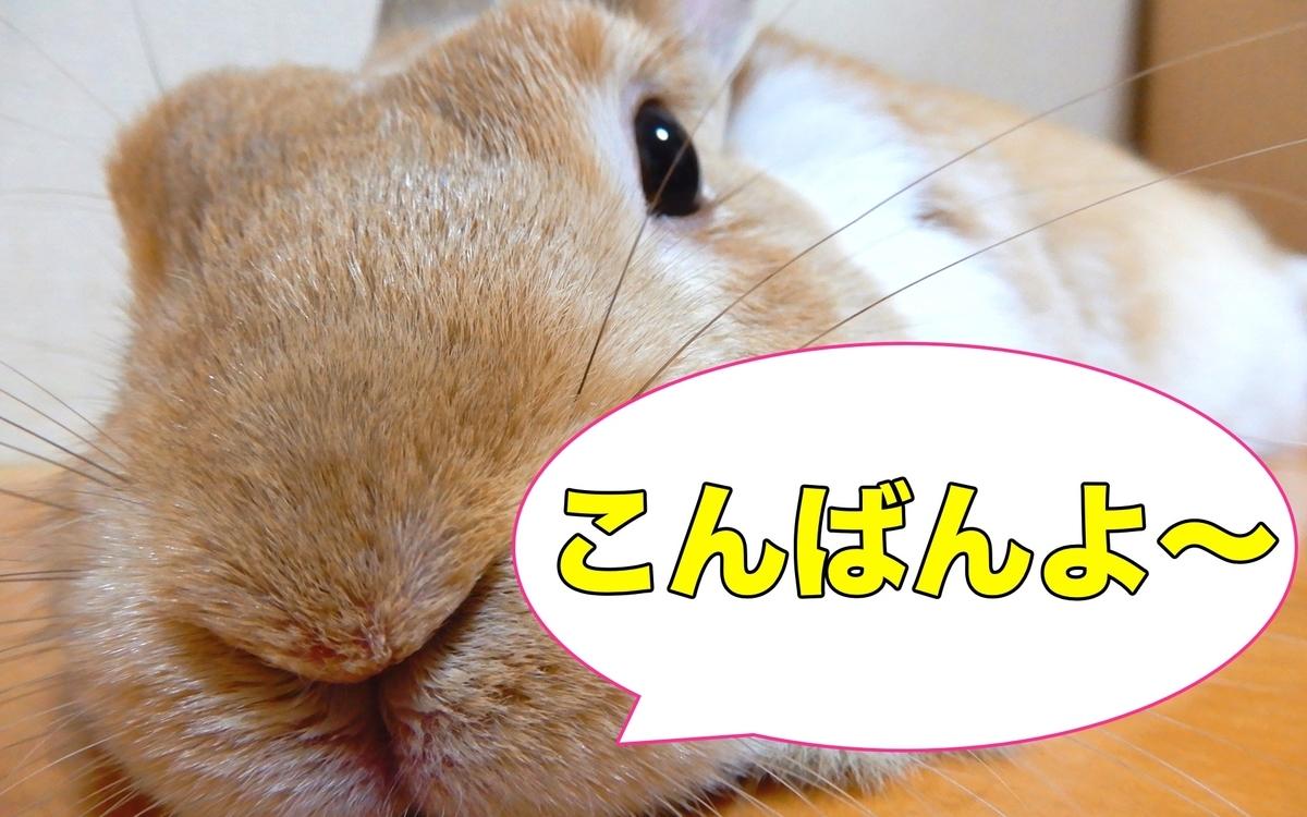 f:id:himitsunohana:20200825193354j:plain