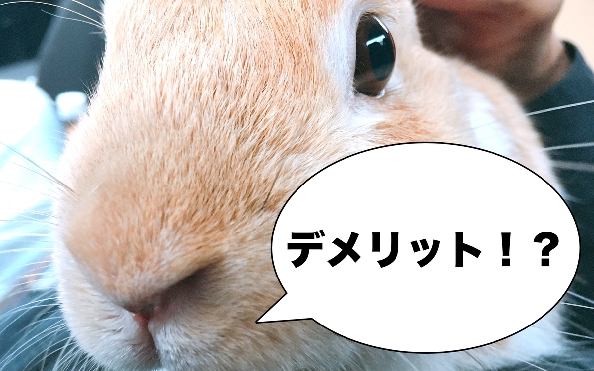 f:id:himitsunohana:20200829143004j:plain