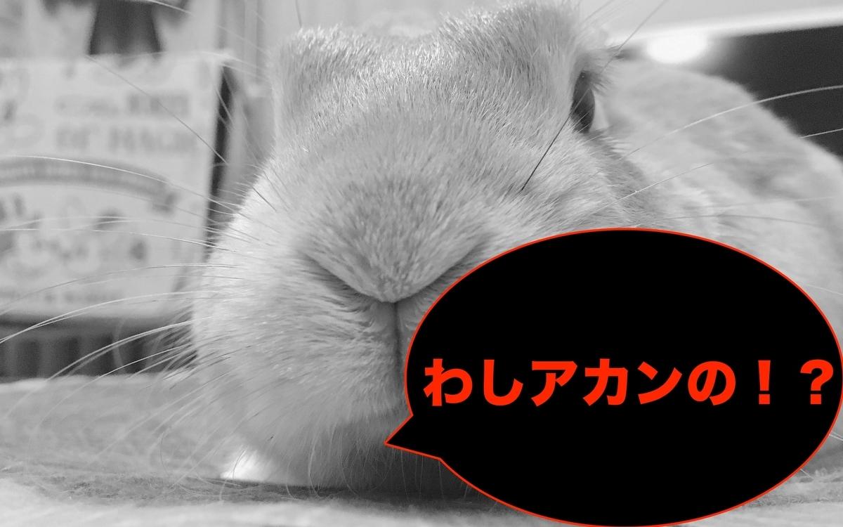 f:id:himitsunohana:20200829143557j:plain