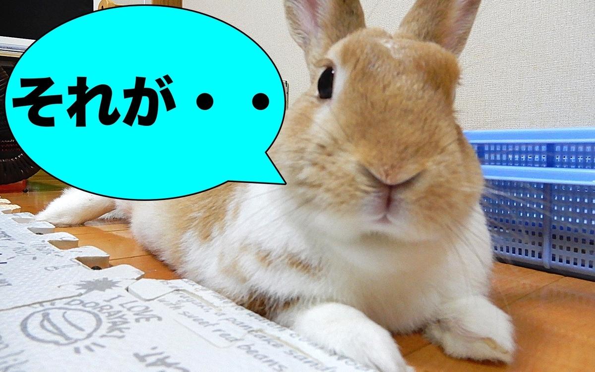 f:id:himitsunohana:20200915100052j:plain