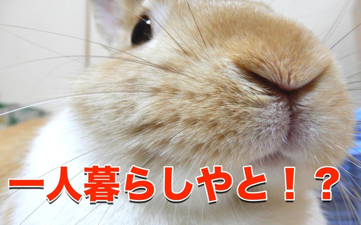 f:id:himitsunohana:20201006133934j:plain