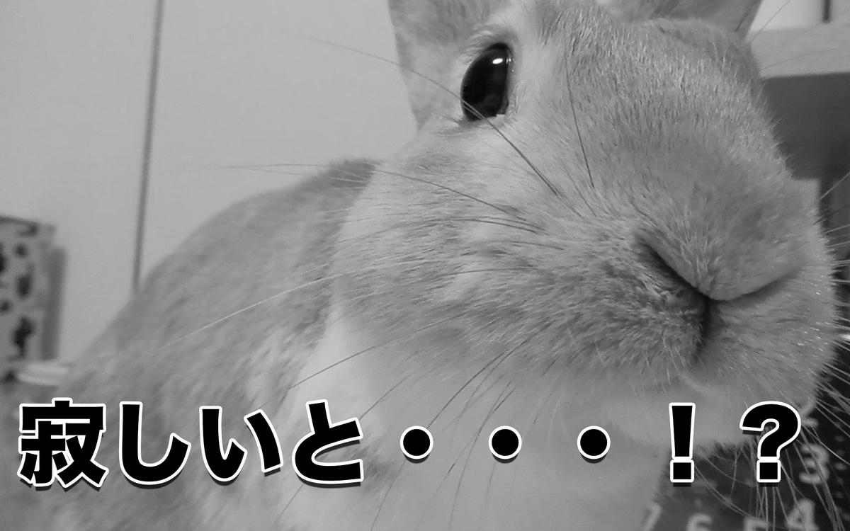 f:id:himitsunohana:20201006134806j:plain