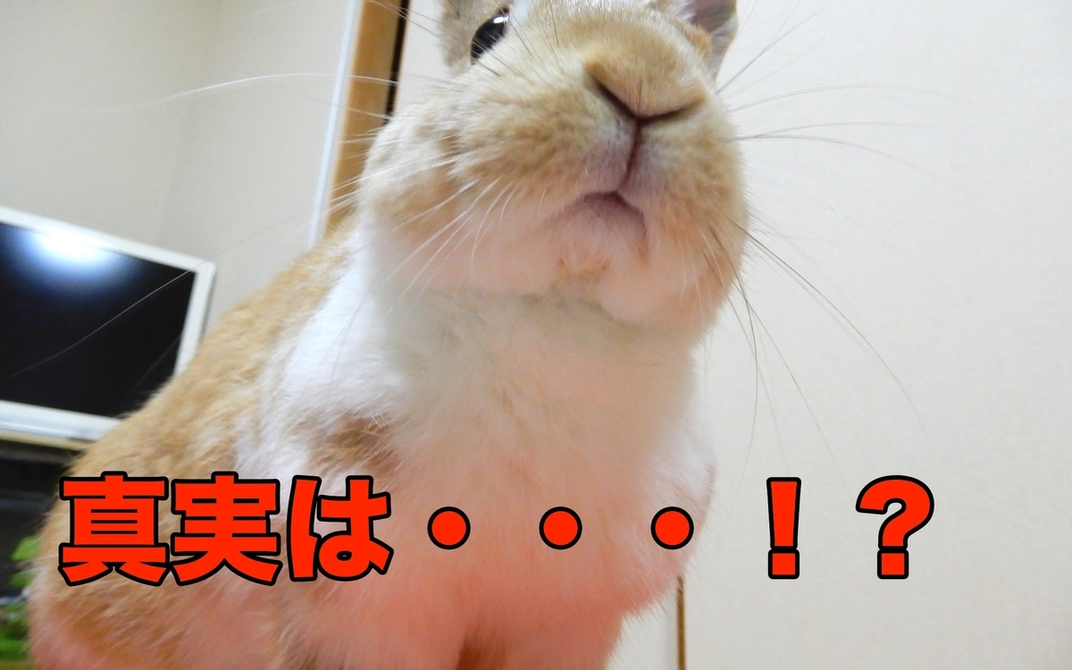 f:id:himitsunohana:20201019174556j:plain