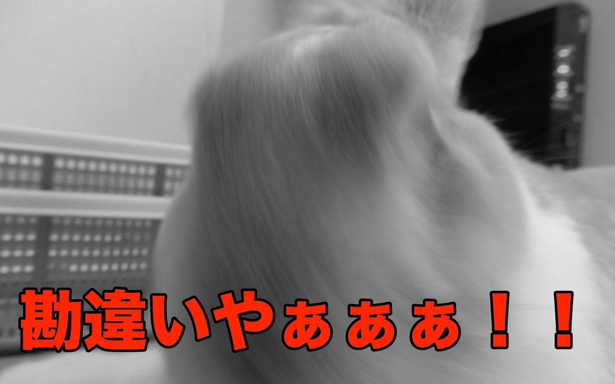 f:id:himitsunohana:20201019180745j:plain