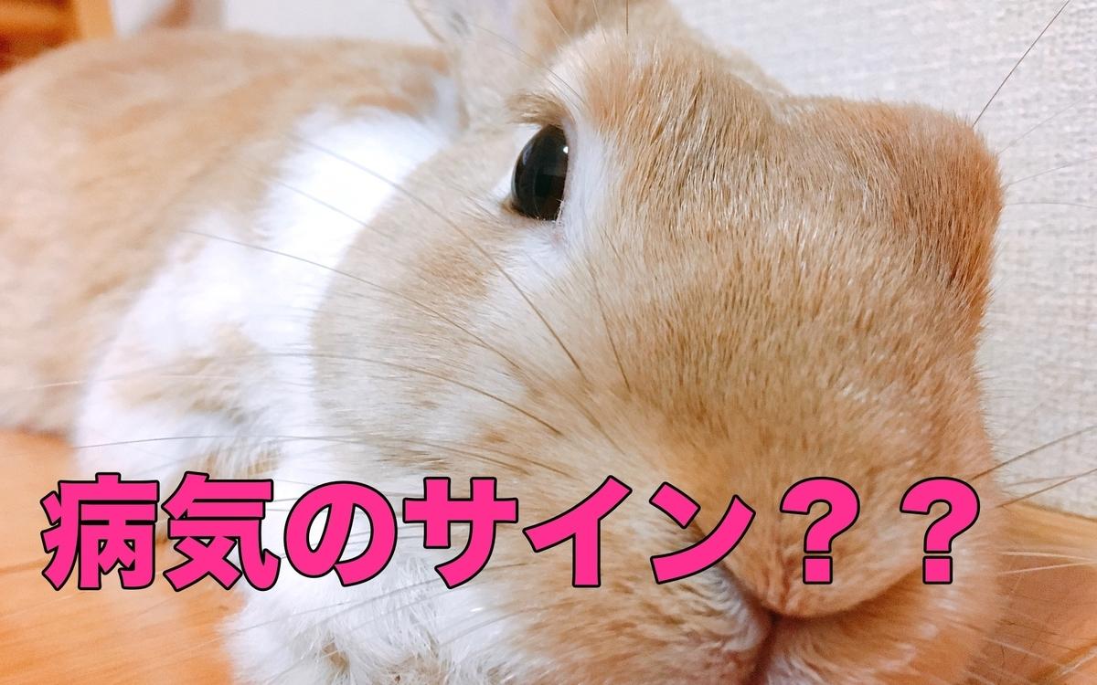f:id:himitsunohana:20201215150228j:plain