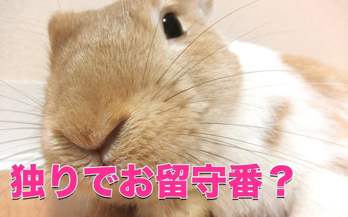 f:id:himitsunohana:20201222173824j:plain
