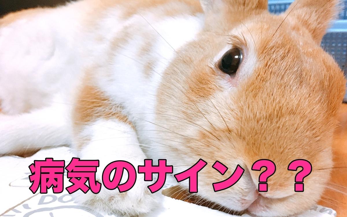 f:id:himitsunohana:20201229080629j:plain