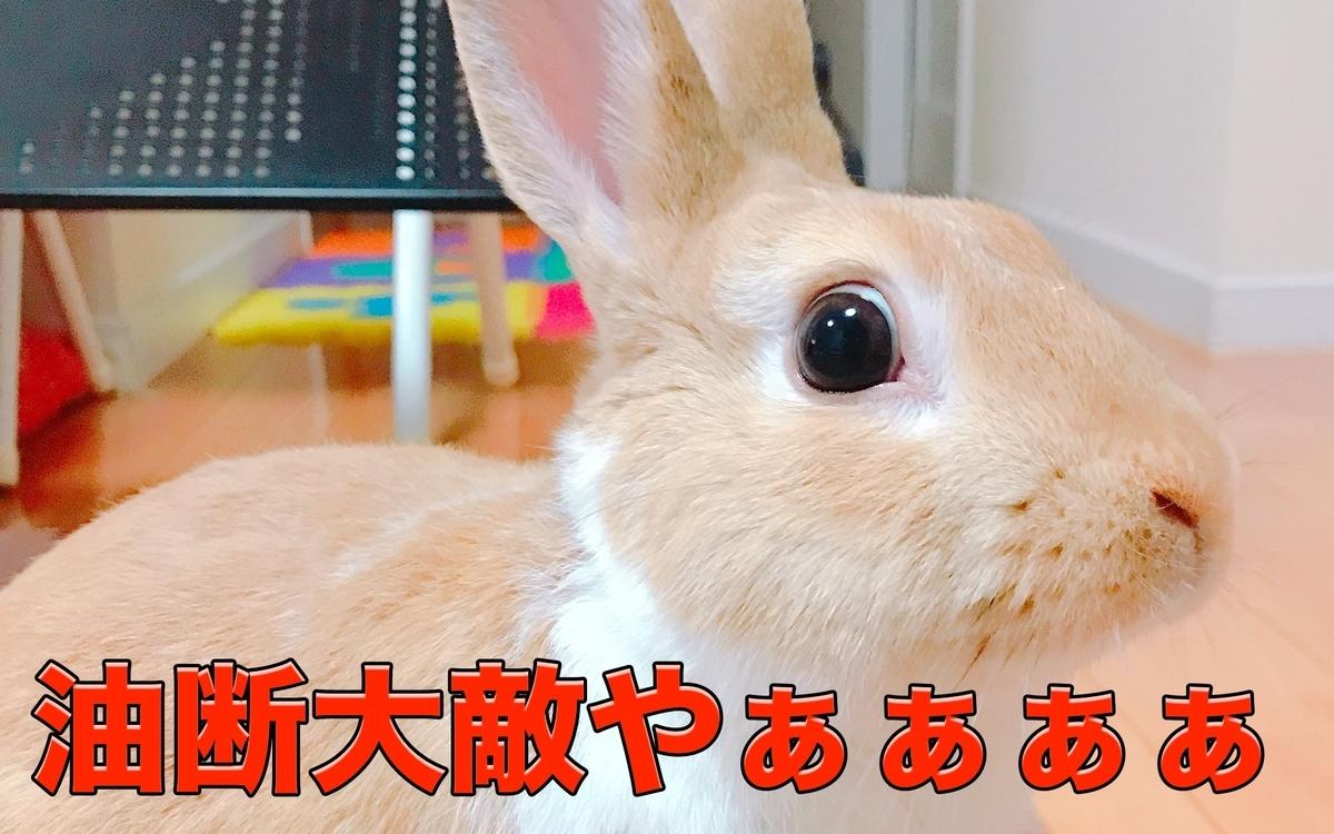 f:id:himitsunohana:20210119145926j:plain