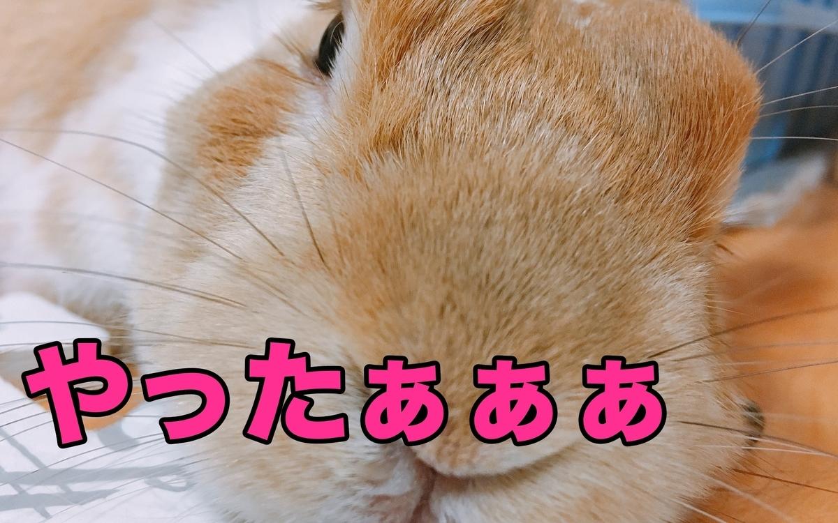 f:id:himitsunohana:20210330095312j:plain