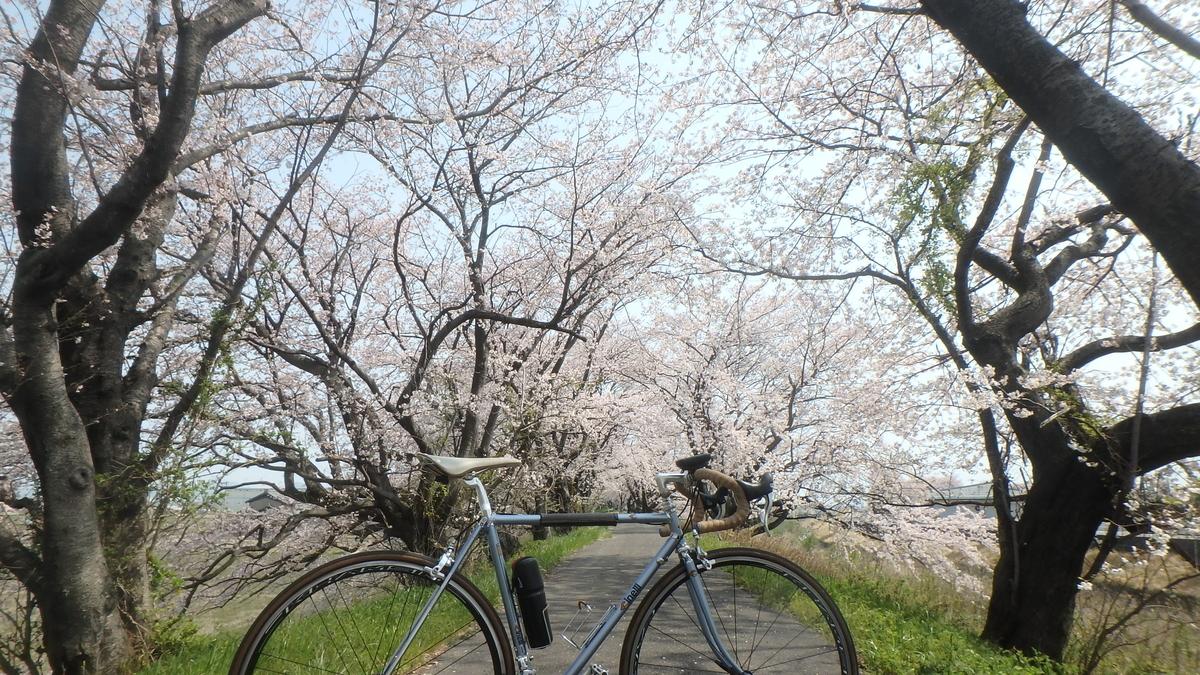 f:id:himiyoshi:20190407104606j:plain