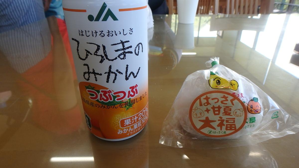 f:id:himiyoshi:20190812133545j:plain