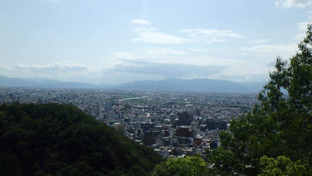 f:id:himiyoshi:20200524145111j:plain
