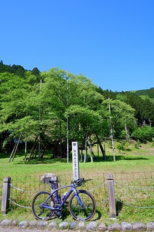 f:id:himiyoshi:20210507032910j:plain