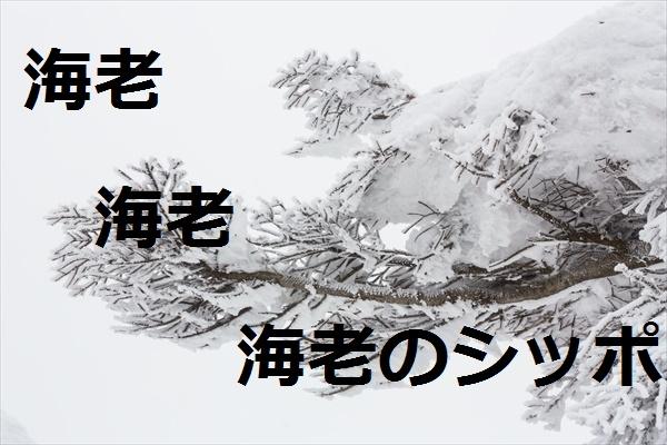 f:id:hinaaoyumi:20161214090413j:plain