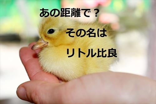 f:id:hinaaoyumi:20170220062026j:plain