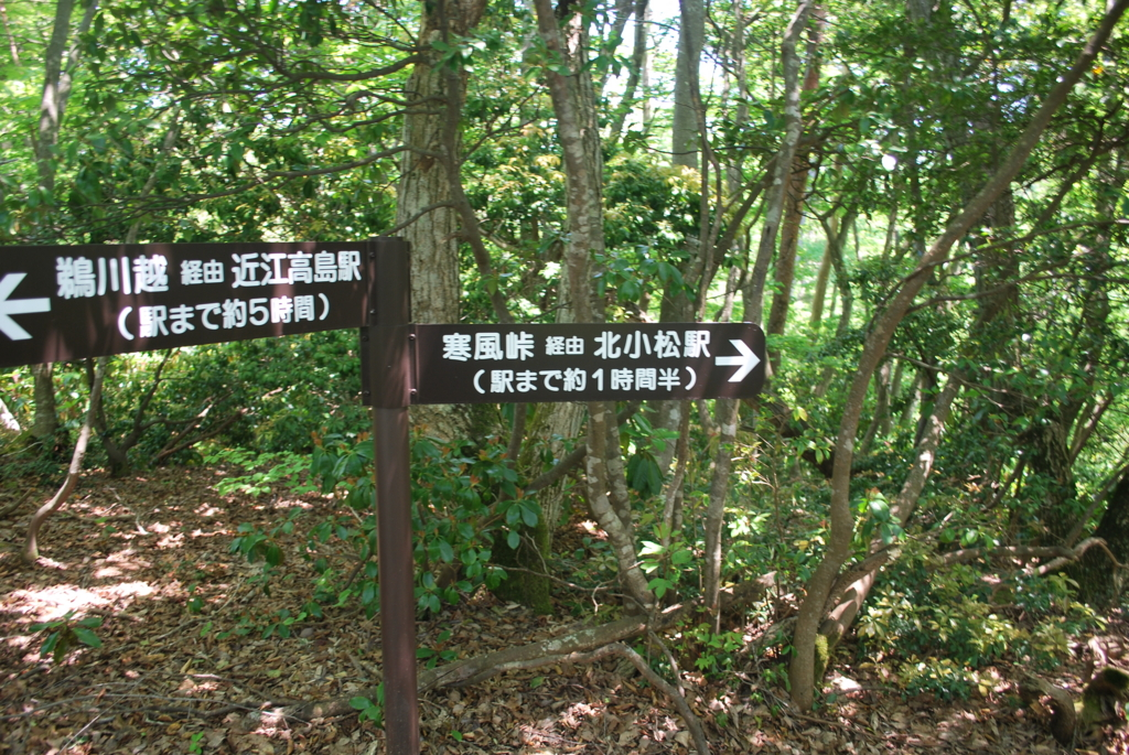 f:id:hinaaoyumi:20170522061833j:plain