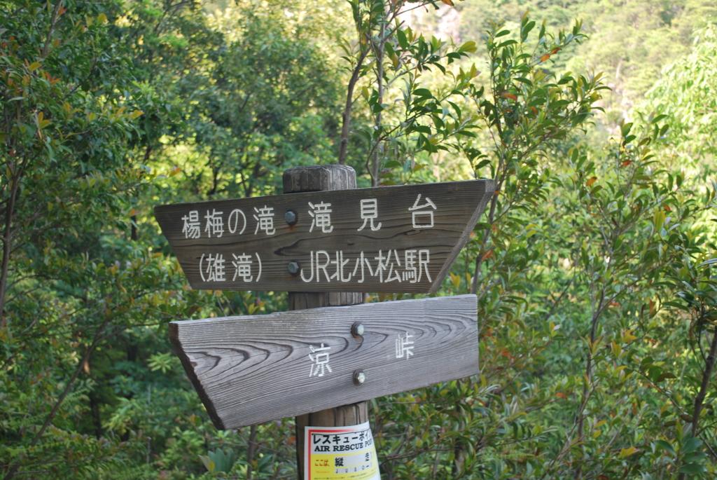 f:id:hinaaoyumi:20170522064009j:plain
