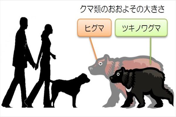 f:id:hinaaoyumi:20170719050242j:plain