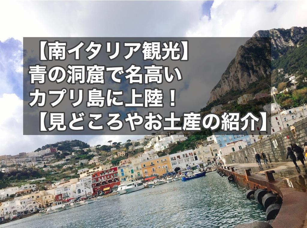 f:id:hinachanningyo:20200422234833j:image