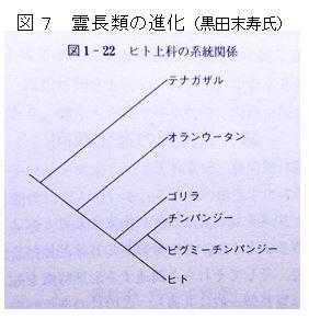 f:id:hinafkin:20210724151750j:plain