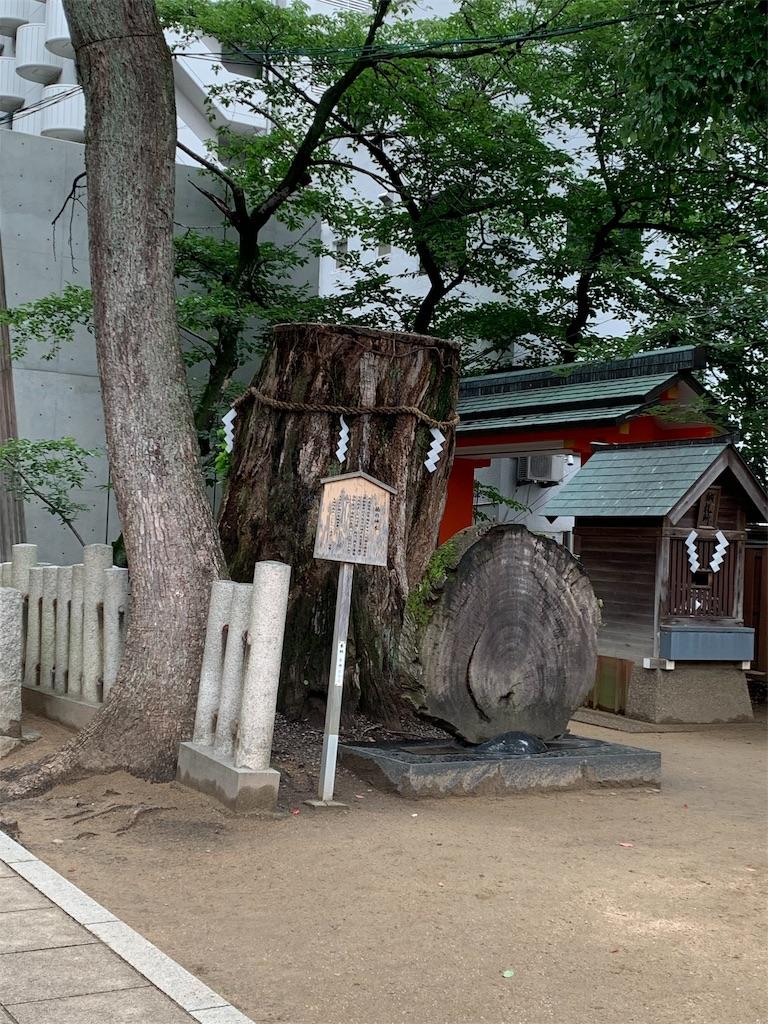 f:id:hinako_ys:20190721005038j:image
