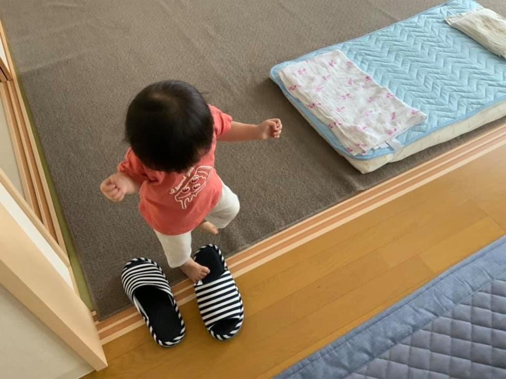 f:id:hinata-kamiyama:20210819142809j:image