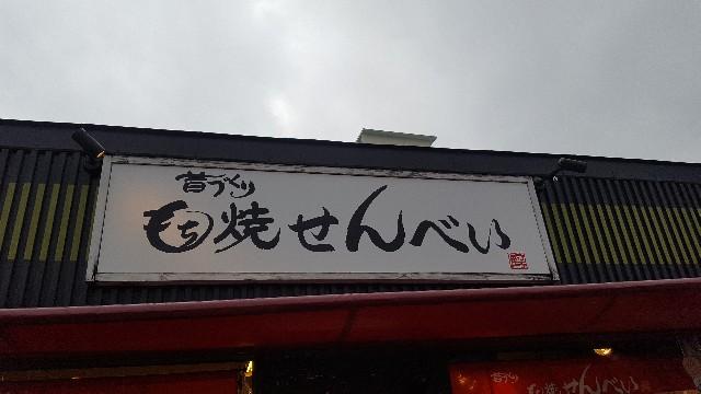 f:id:hinatanoyou:20190321152503j:image