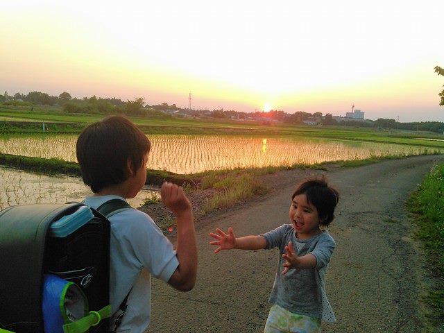 f:id:hinatao-wife:20170520155641j:plain